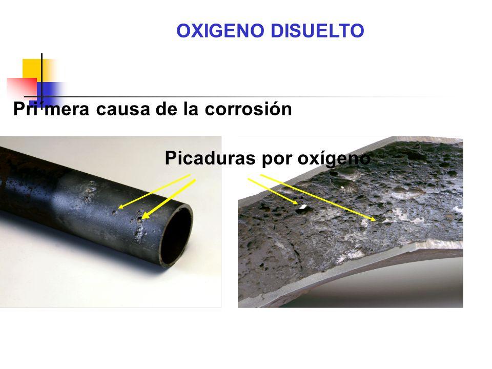 OXIGENO DISUELTO Picaduras por oxígeno Pri´mera causa de la corrosión