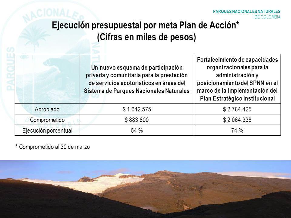 Ejecución presupuestal por meta Plan de Acción