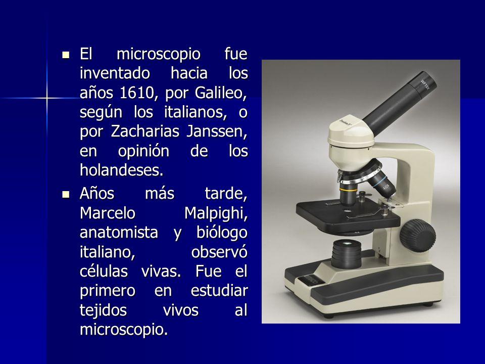 El microscopio fue inventado hacia los años 1610, por Galileo, según los italianos, o por Zacharias Janssen, en opinión de los holandeses.