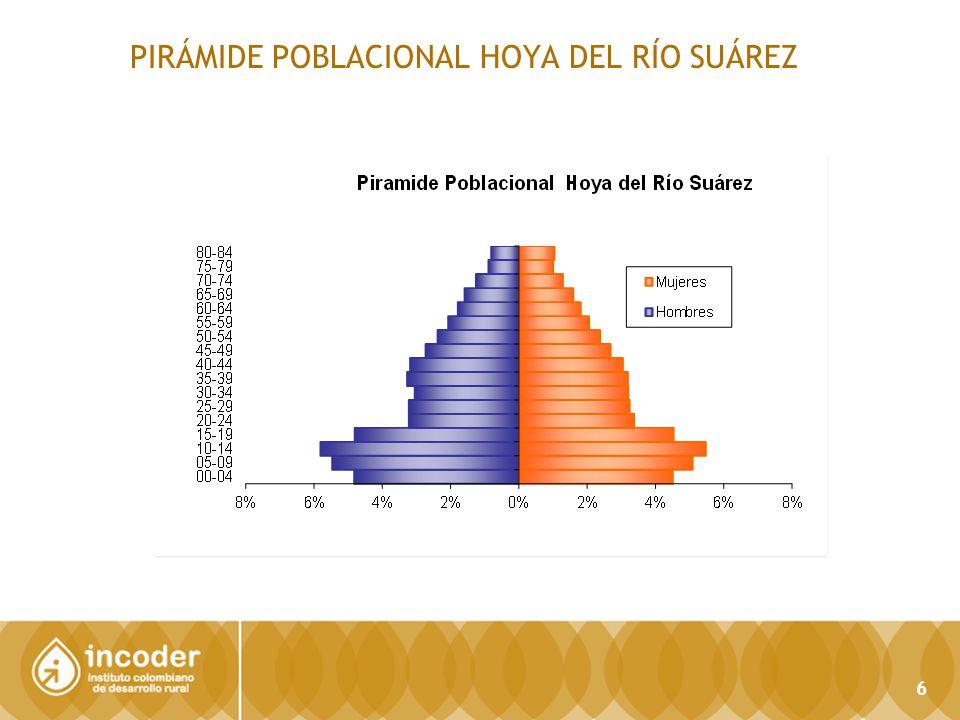 PIRÁMIDE POBLACIONAL HOYA DEL RÍO SUÁREZ