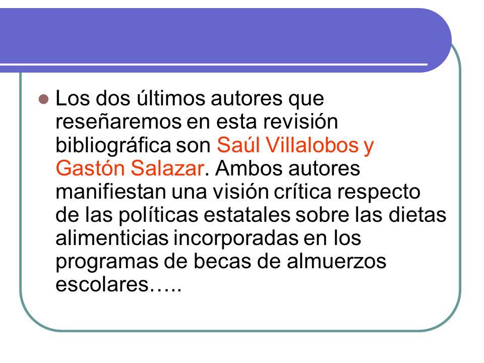 Los dos últimos autores que reseñaremos en esta revisión bibliográfica son Saúl Villalobos y Gastón Salazar.