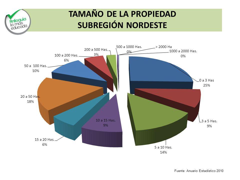 TAMAÑO DE LA PROPIEDAD SUBREGIÓN NORDESTE