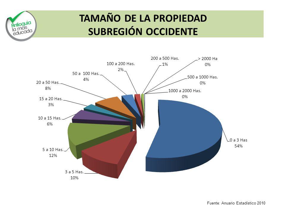 TAMAÑO DE LA PROPIEDAD SUBREGIÓN OCCIDENTE