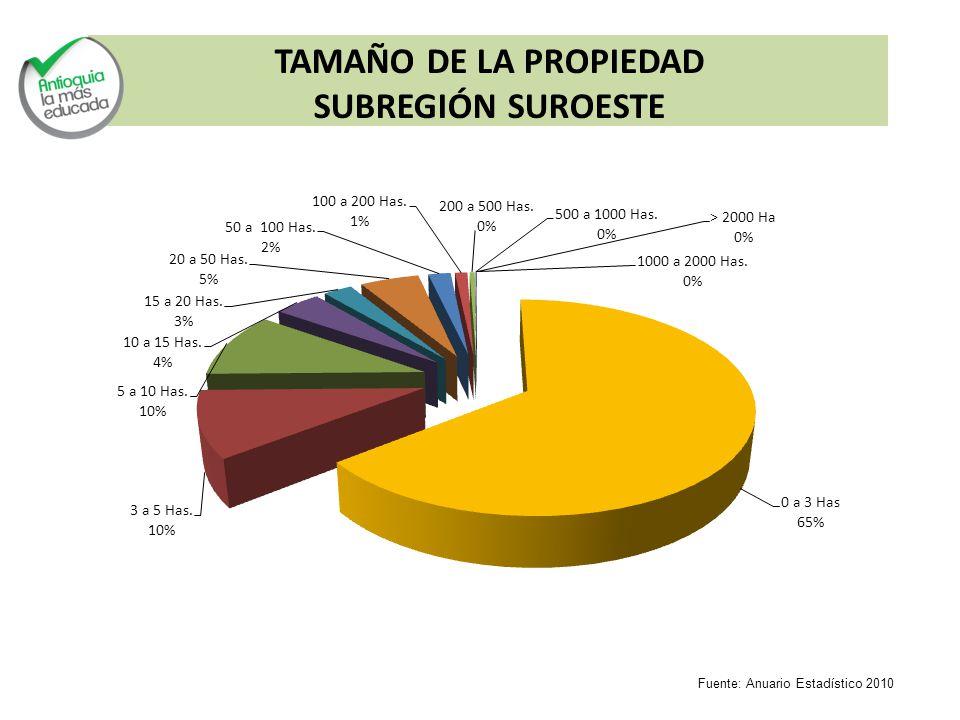 TAMAÑO DE LA PROPIEDAD SUBREGIÓN SUROESTE