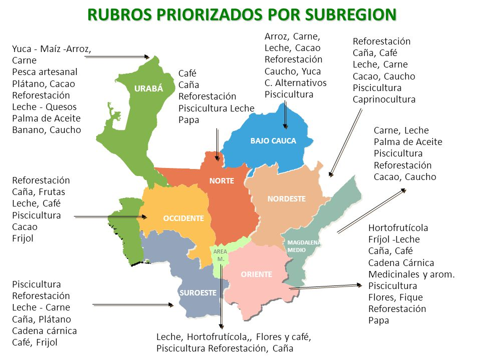 RUBROS PRIORIZADOS POR SUBREGION
