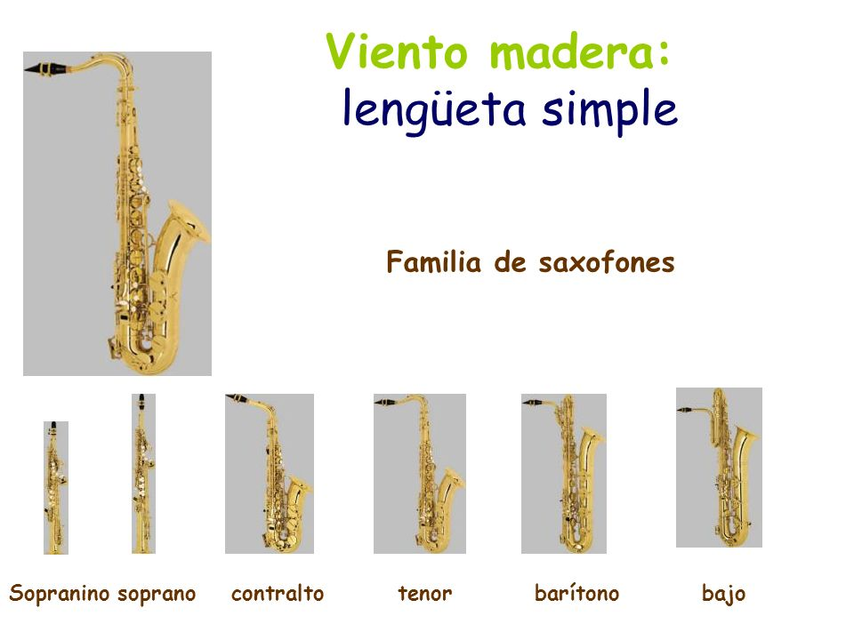 Viento madera: lengüeta simple