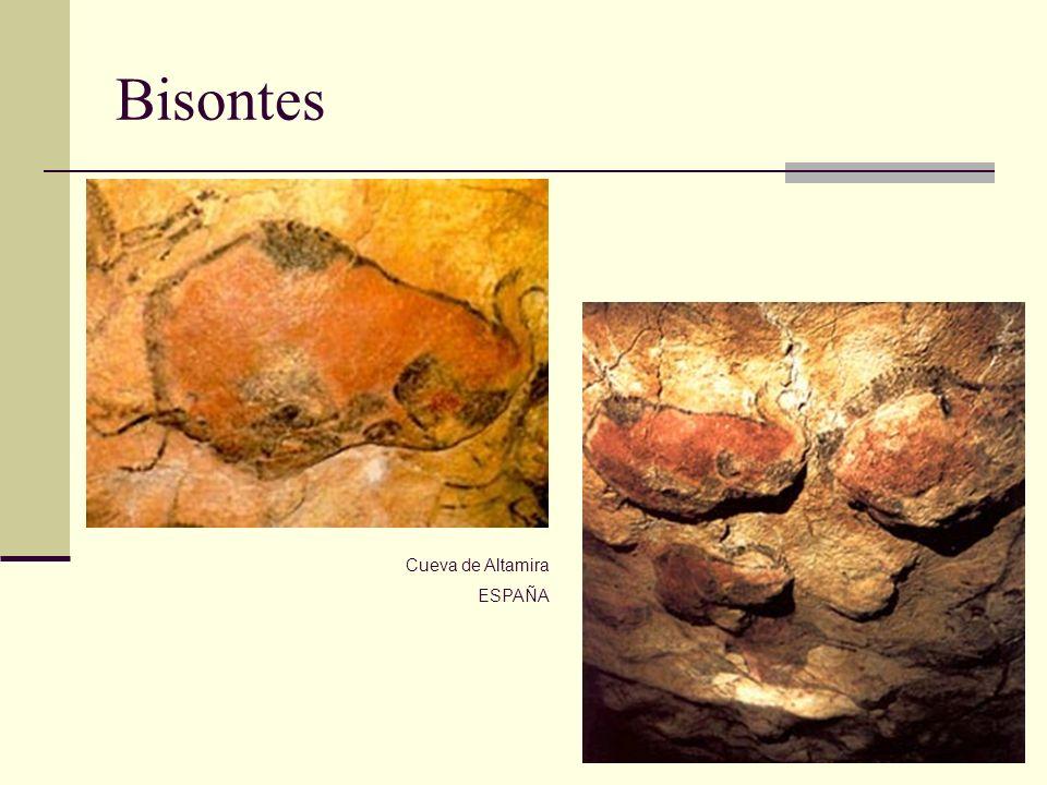 Bisontes Cueva de Altamira ESPAÑA