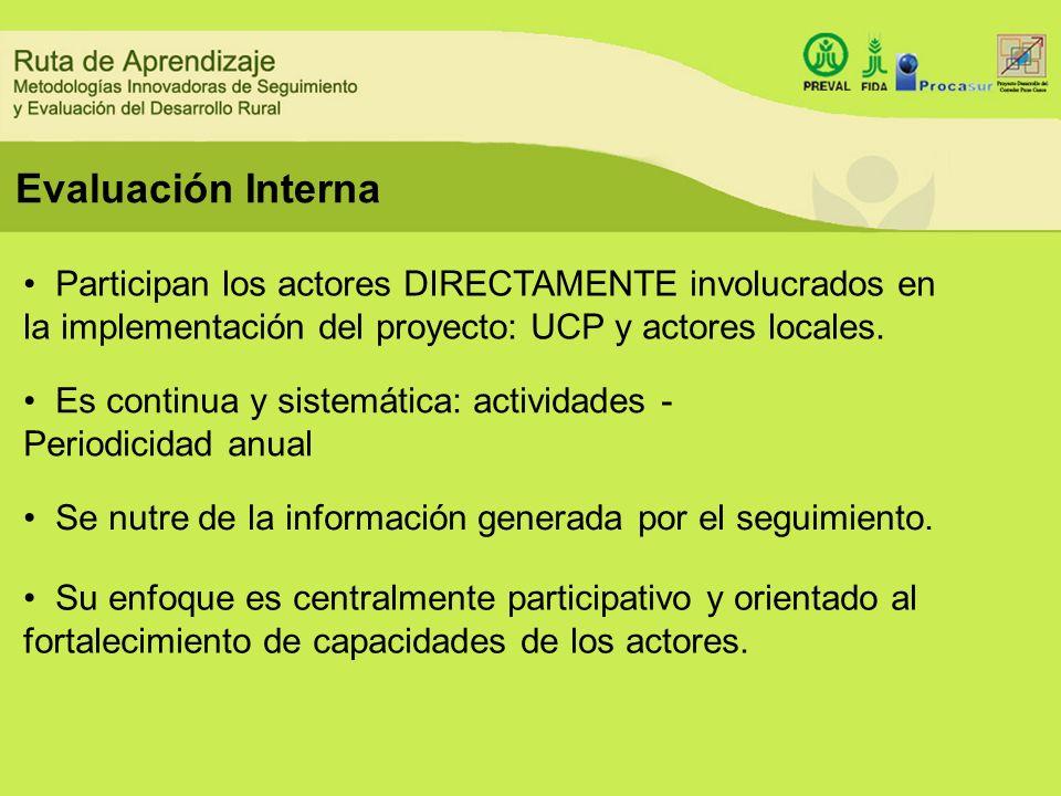Evaluación InternaParticipan los actores DIRECTAMENTE involucrados en la implementación del proyecto: UCP y actores locales.