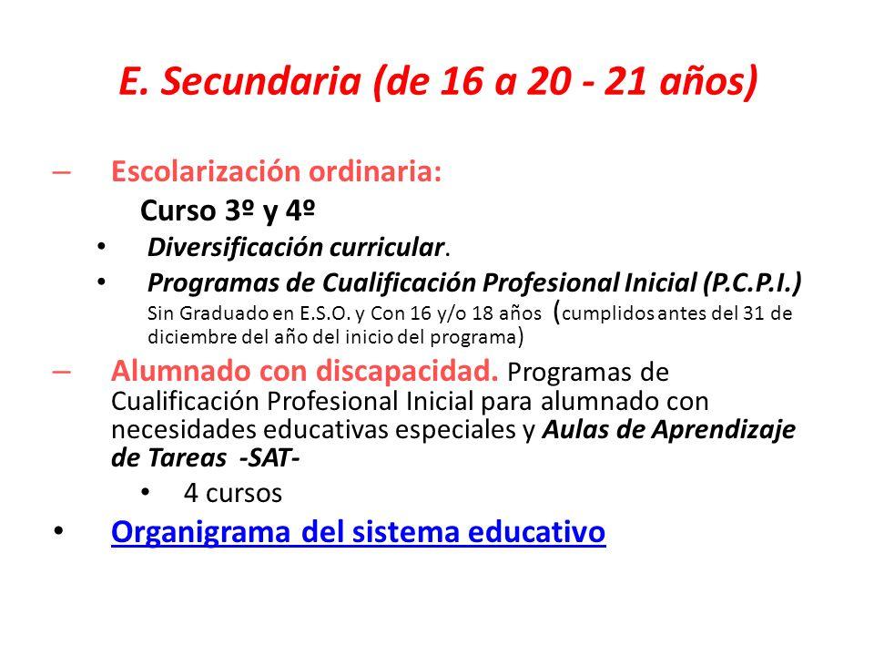 E. Secundaria (de 16 a 20 - 21 años)