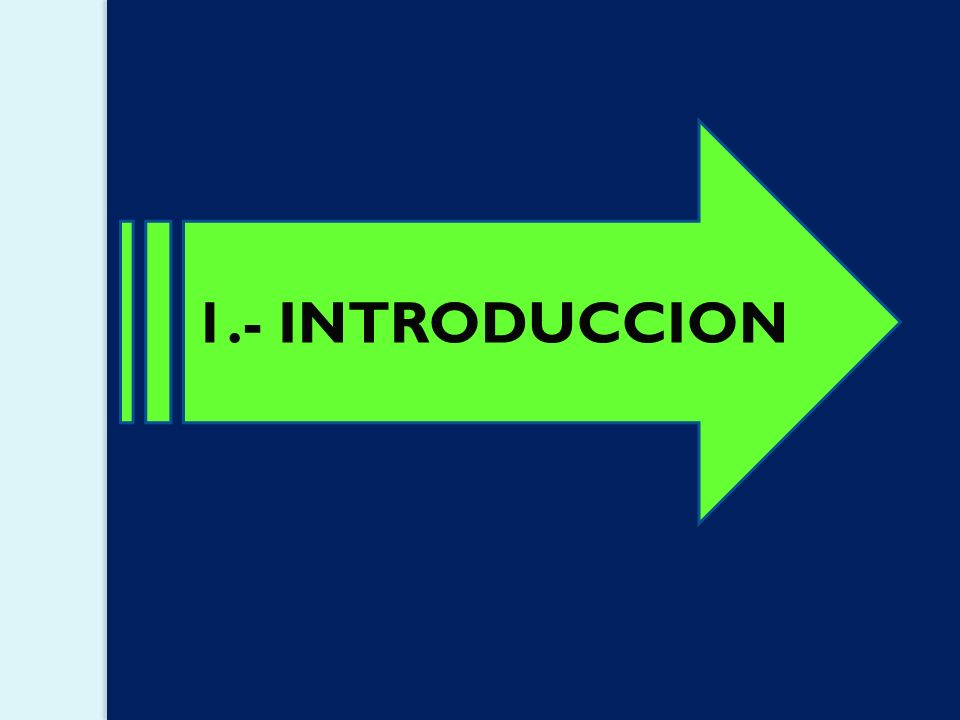 1.- INTRODUCCION