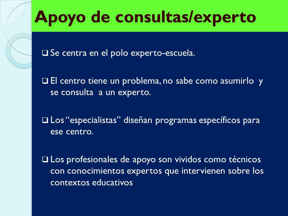 Apoyo de consultas/experto