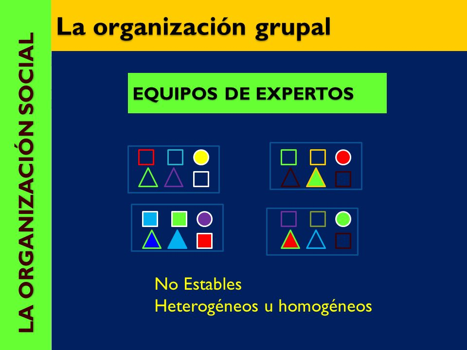 La organización grupal