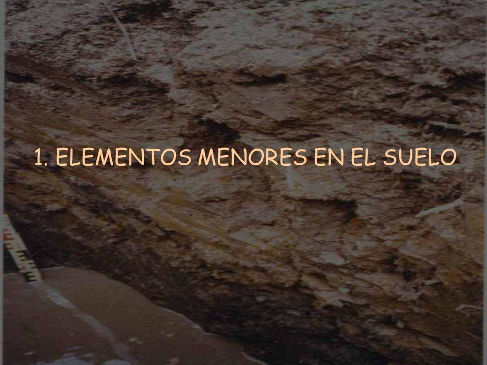 1. ELEMENTOS MENORES EN EL SUELO