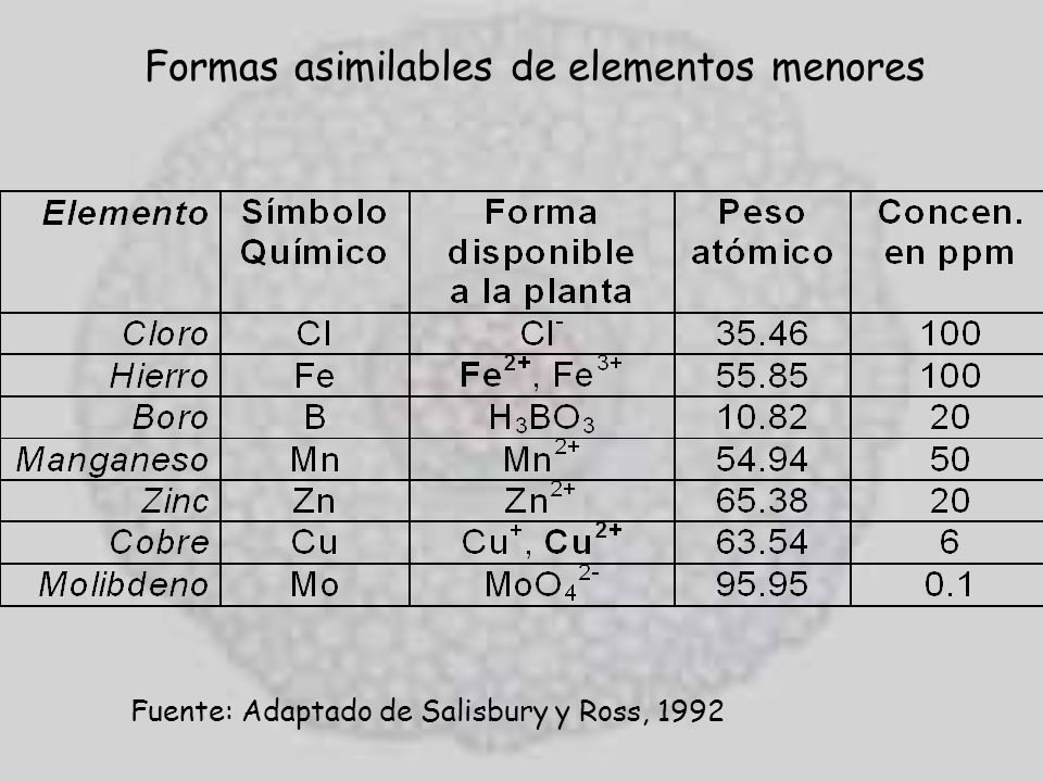 Formas asimilables de elementos menores