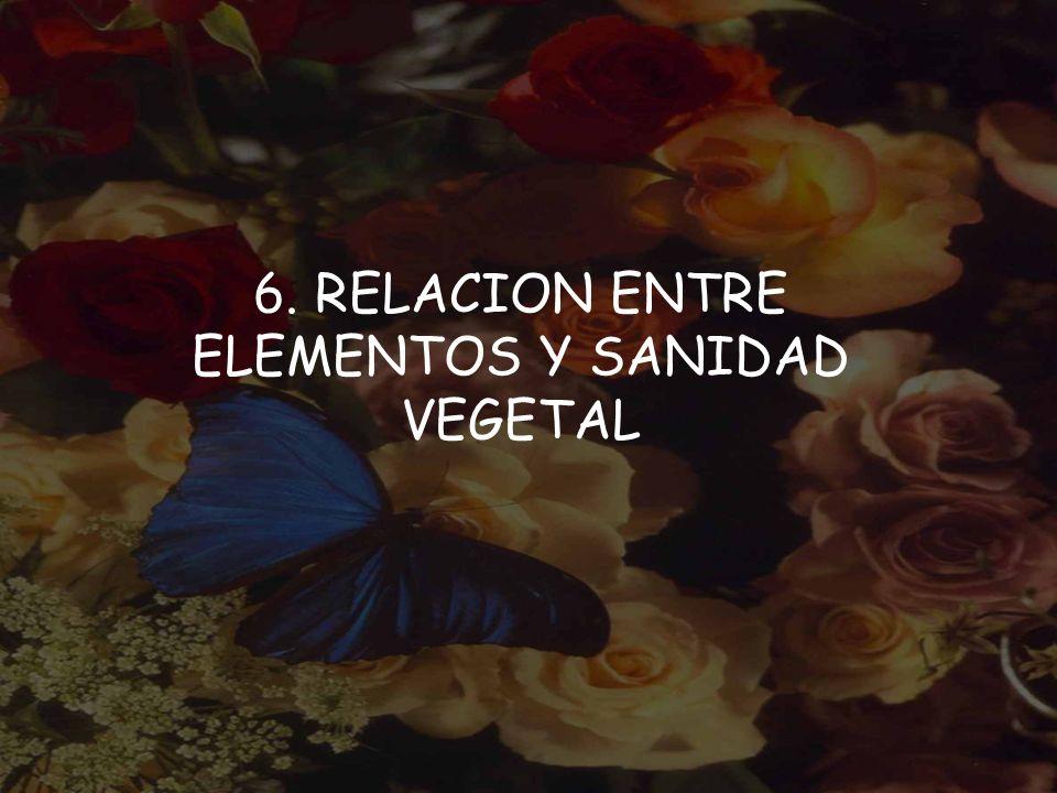 6. RELACION ENTRE ELEMENTOS Y SANIDAD VEGETAL