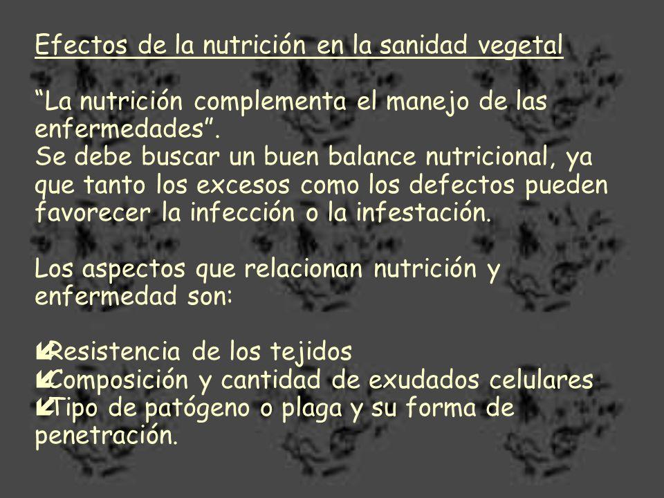 Efectos de la nutrición en la sanidad vegetal
