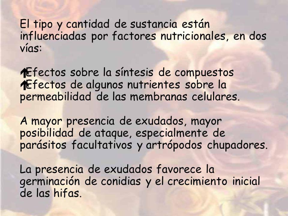 El tipo y cantidad de sustancia están influenciadas por factores nutricionales, en dos vías: