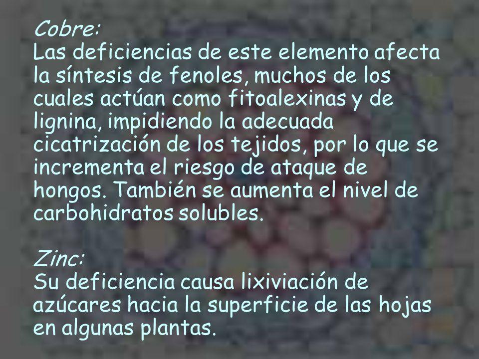 Cobre: