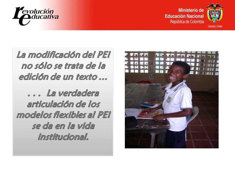 La modificación del PEI no sólo se trata de la edición de un texto …