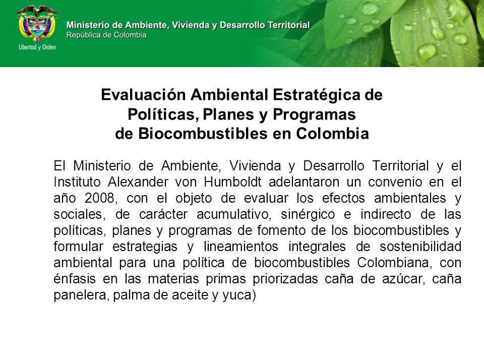 Evaluación Ambiental Estratégica de Políticas, Planes y Programas de Biocombustibles en Colombia
