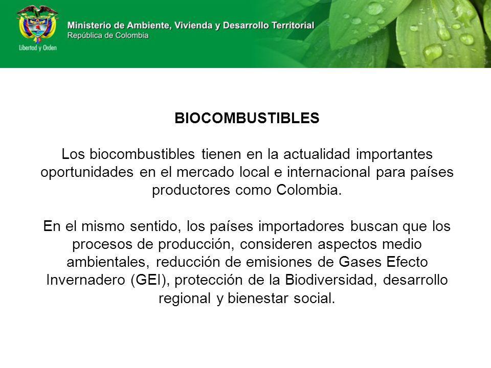 BIOCOMBUSTIBLES Los biocombustibles tienen en la actualidad importantes oportunidades en el mercado local e internacional para países productores como Colombia.