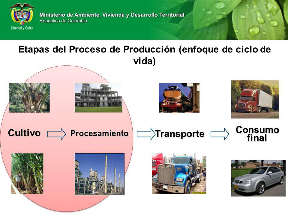 Etapas del Proceso de Producción (enfoque de ciclo de vida)