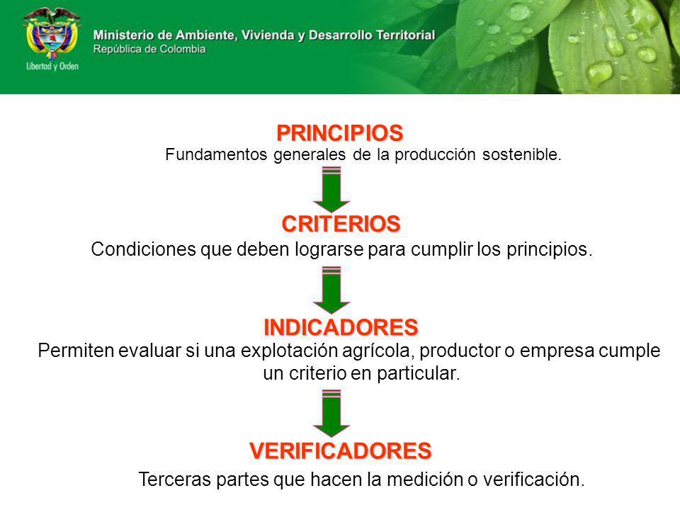 PRINCIPIOS CRITERIOS INDICADORES VERIFICADORES
