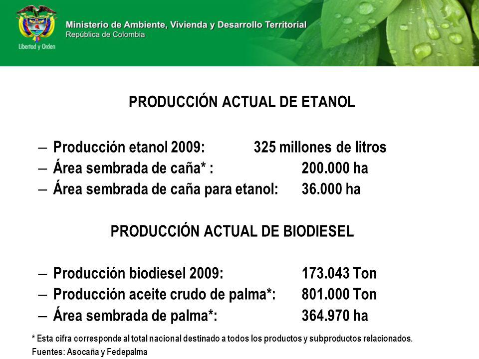PRODUCCIÓN ACTUAL DE ETANOL