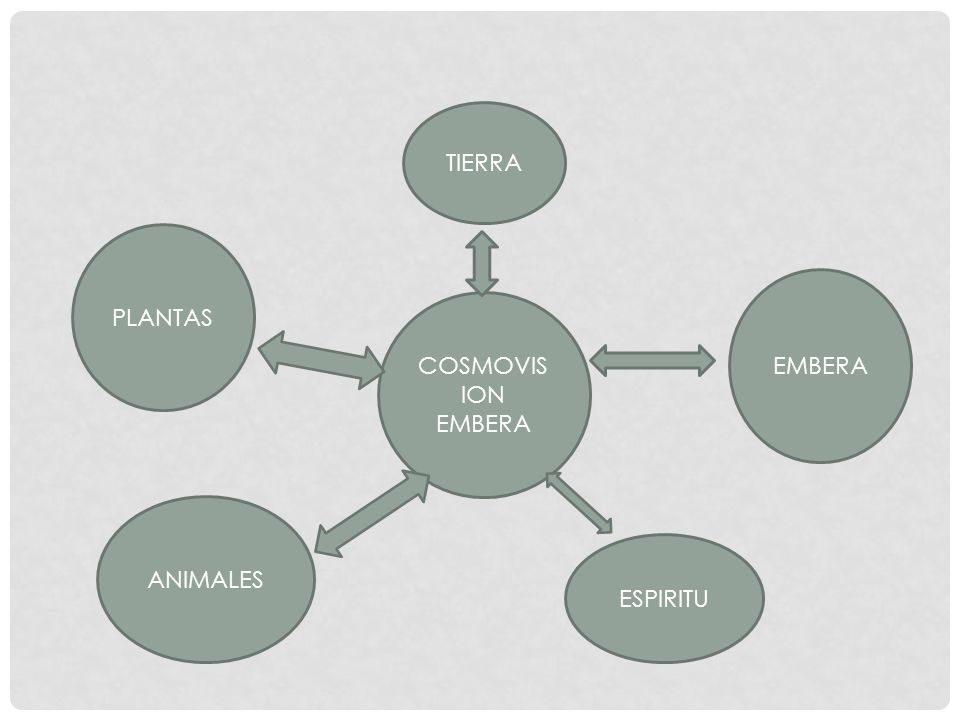 TIERRA PLANTAS EMBERA COSMOVISION EMBERA ANIMALES ESPIRITU