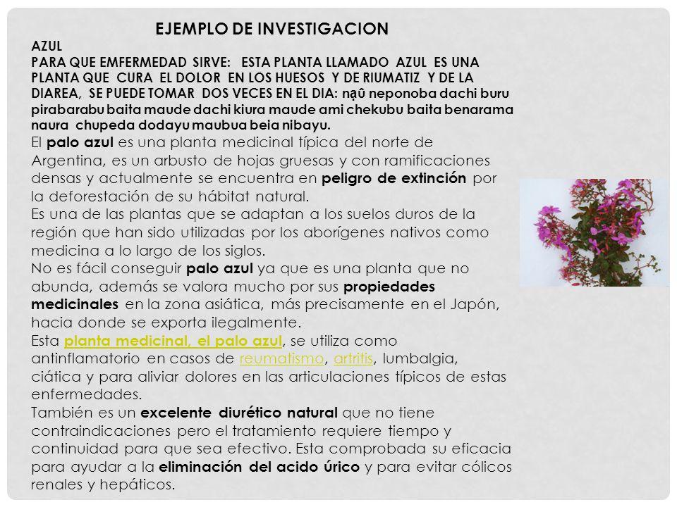 EJEMPLO DE INVESTIGACION