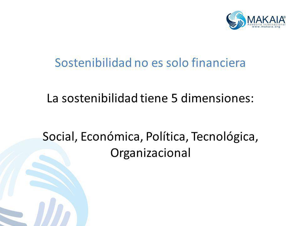 Sostenibilidad no es solo financiera