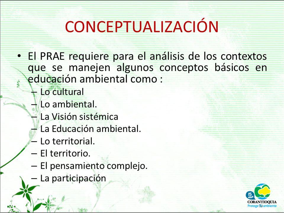 CONCEPTUALIZACIÓN El PRAE requiere para el análisis de los contextos que se manejen algunos conceptos básicos en educación ambiental como :