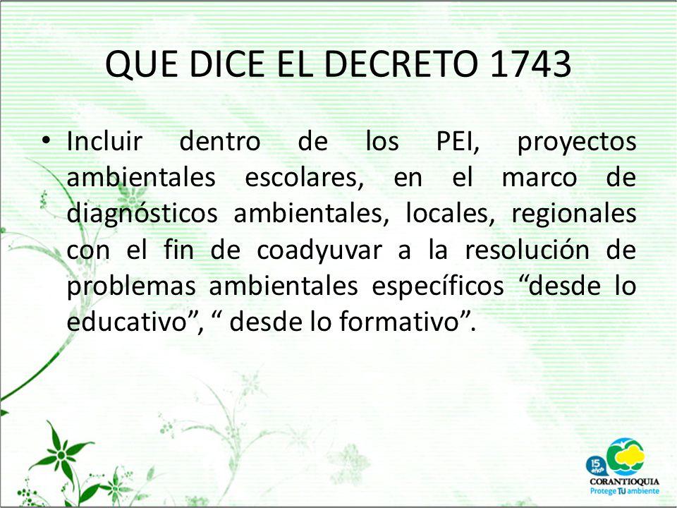 QUE DICE EL DECRETO 1743