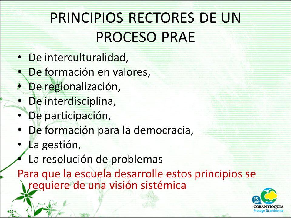 PRINCIPIOS RECTORES DE UN PROCESO PRAE