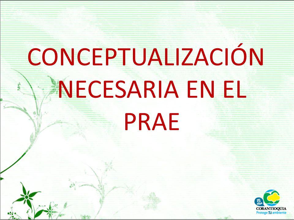 CONCEPTUALIZACIÓN NECESARIA EN EL PRAE