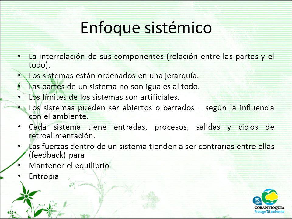 Enfoque sistémico La interrelación de sus componentes (relación entre las partes y el todo). Los sistemas están ordenados en una jerarquía.