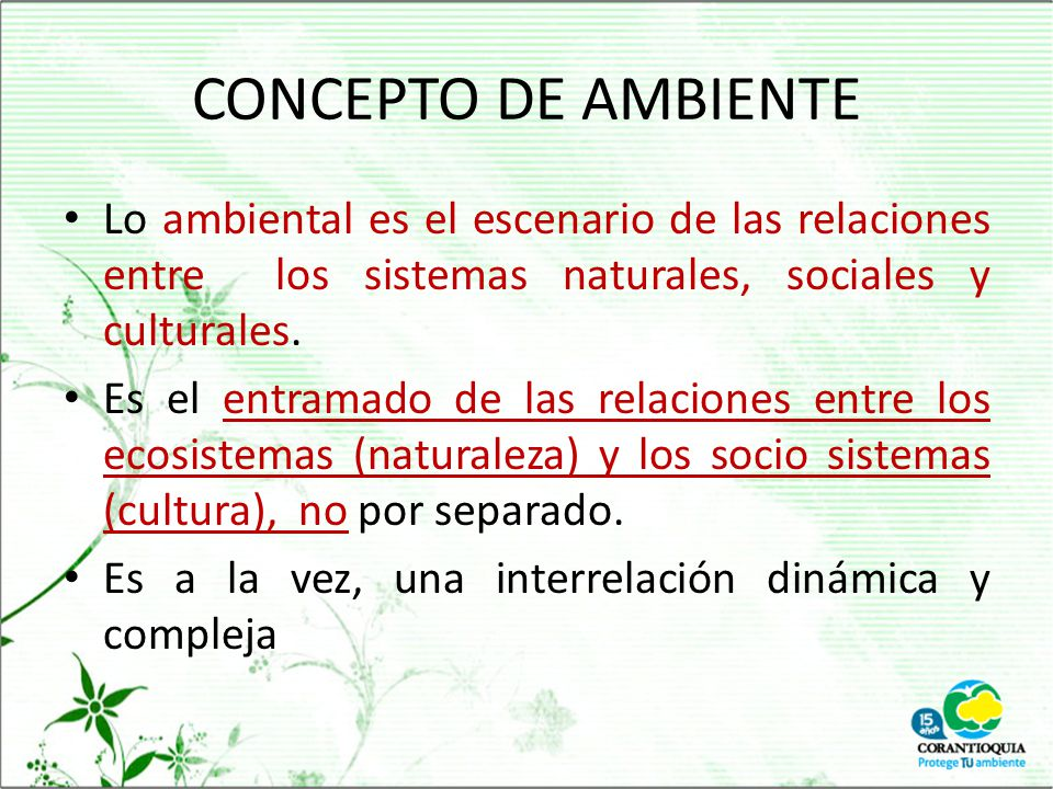 CONCEPTO DE AMBIENTE Lo ambiental es el escenario de las relaciones entre los sistemas naturales, sociales y culturales.