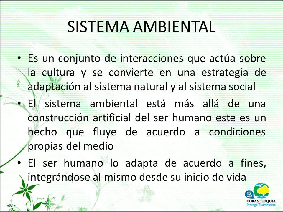 SISTEMA AMBIENTAL