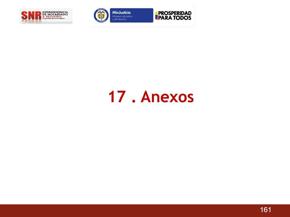 17 . Anexos 161