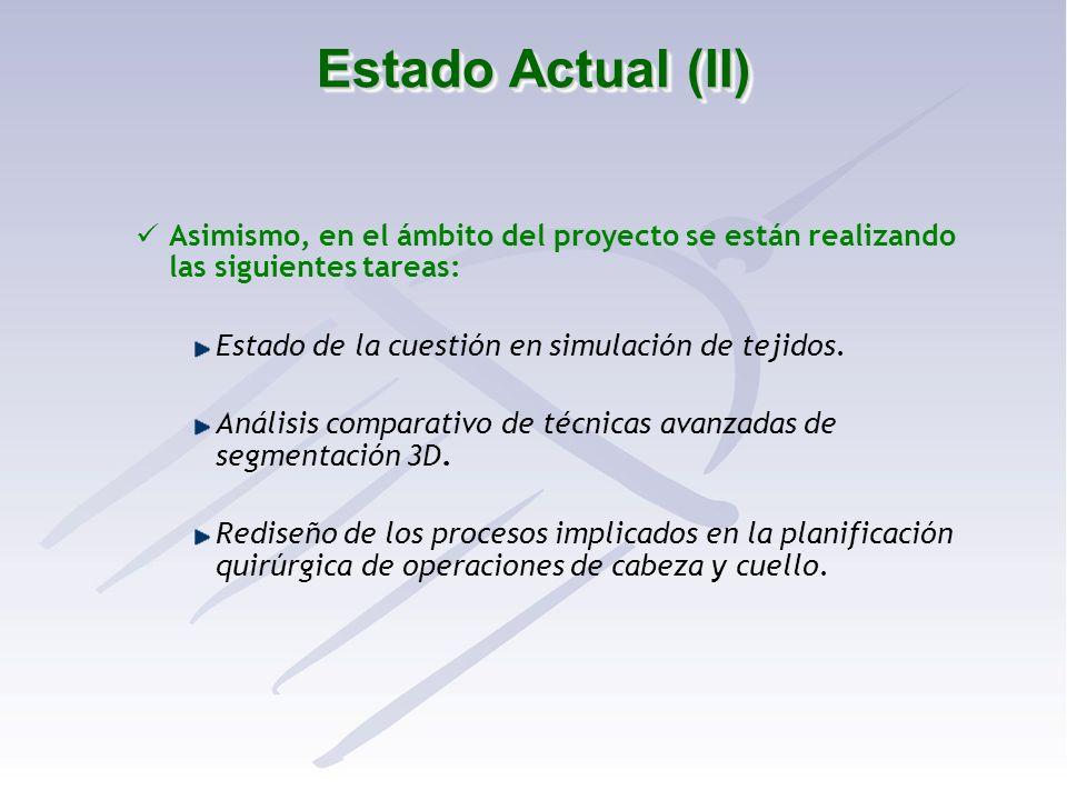 Estado Actual (II) Asimismo, en el ámbito del proyecto se están realizando las siguientes tareas: Estado de la cuestión en simulación de tejidos.