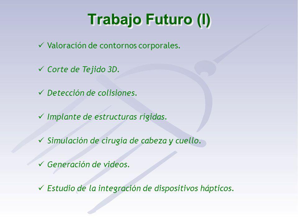 Trabajo Futuro (I) Valoración de contornos corporales.