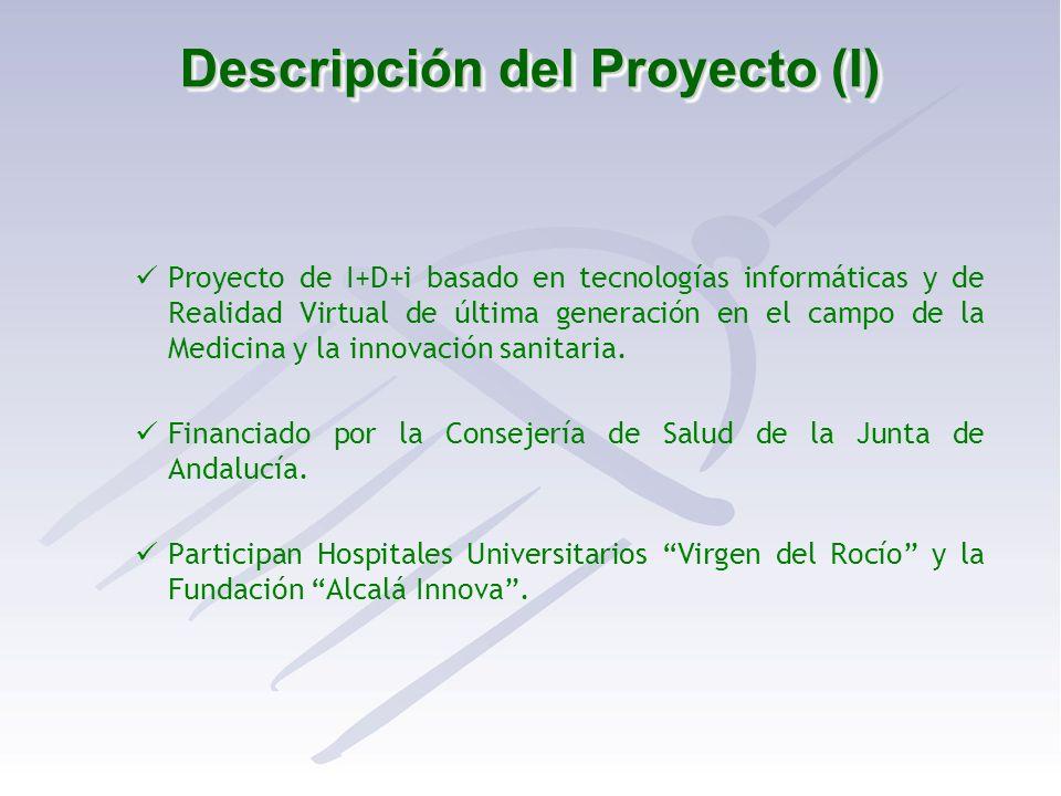 Descripción del Proyecto (I)