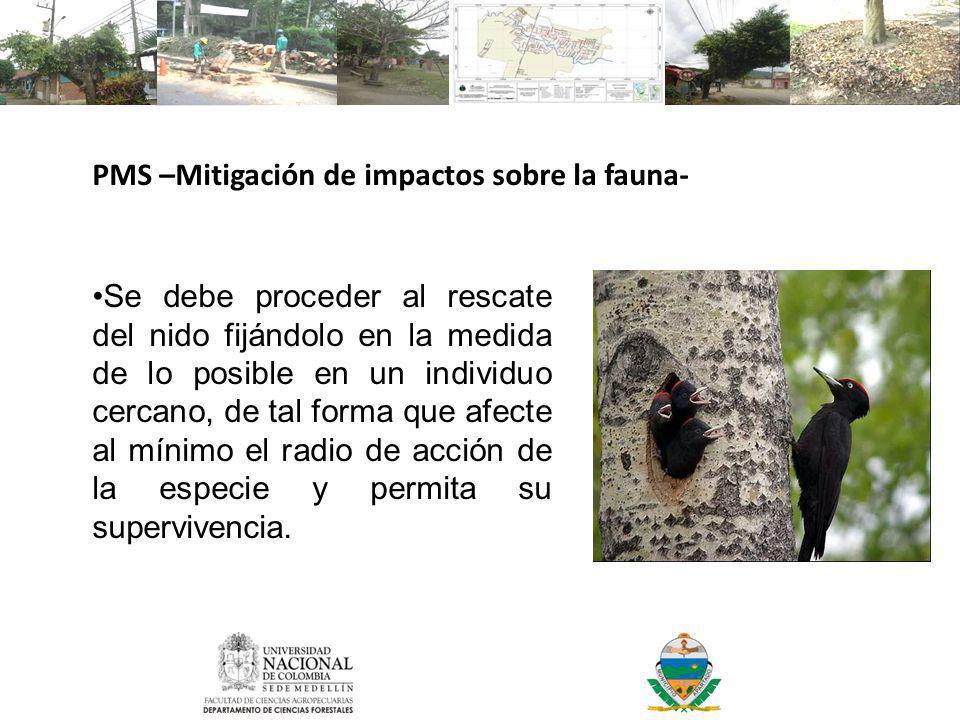 PMS –Mitigación de impactos sobre la fauna-