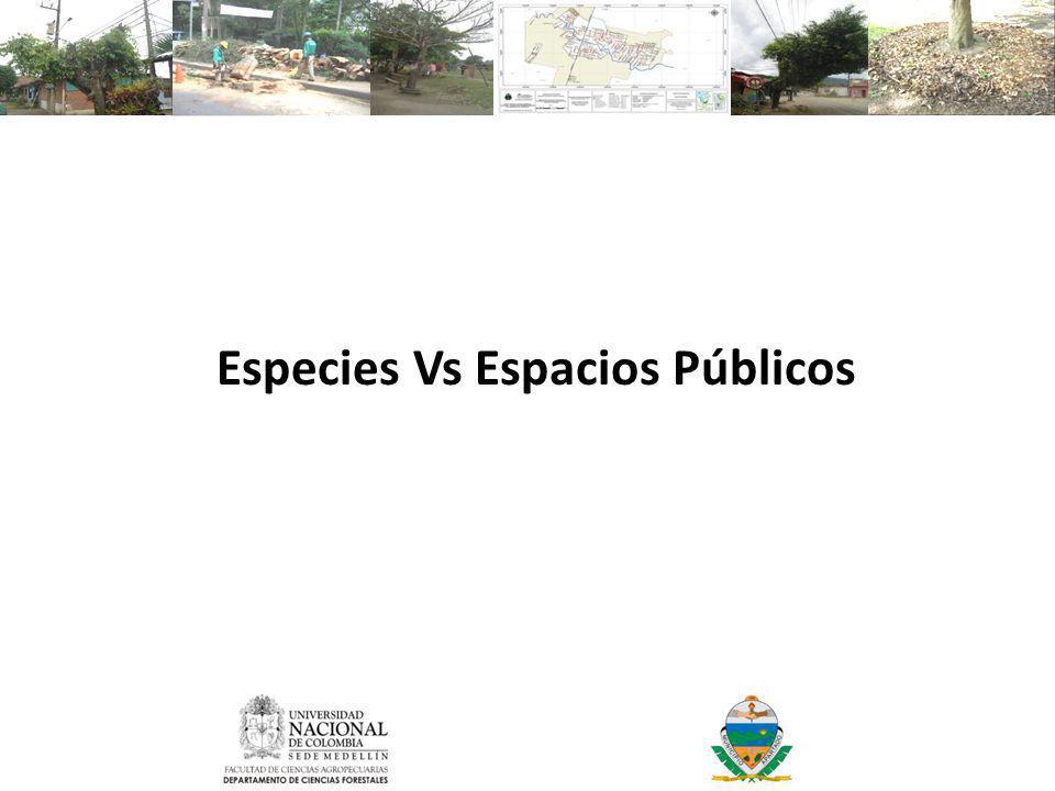 Especies Vs Espacios Públicos