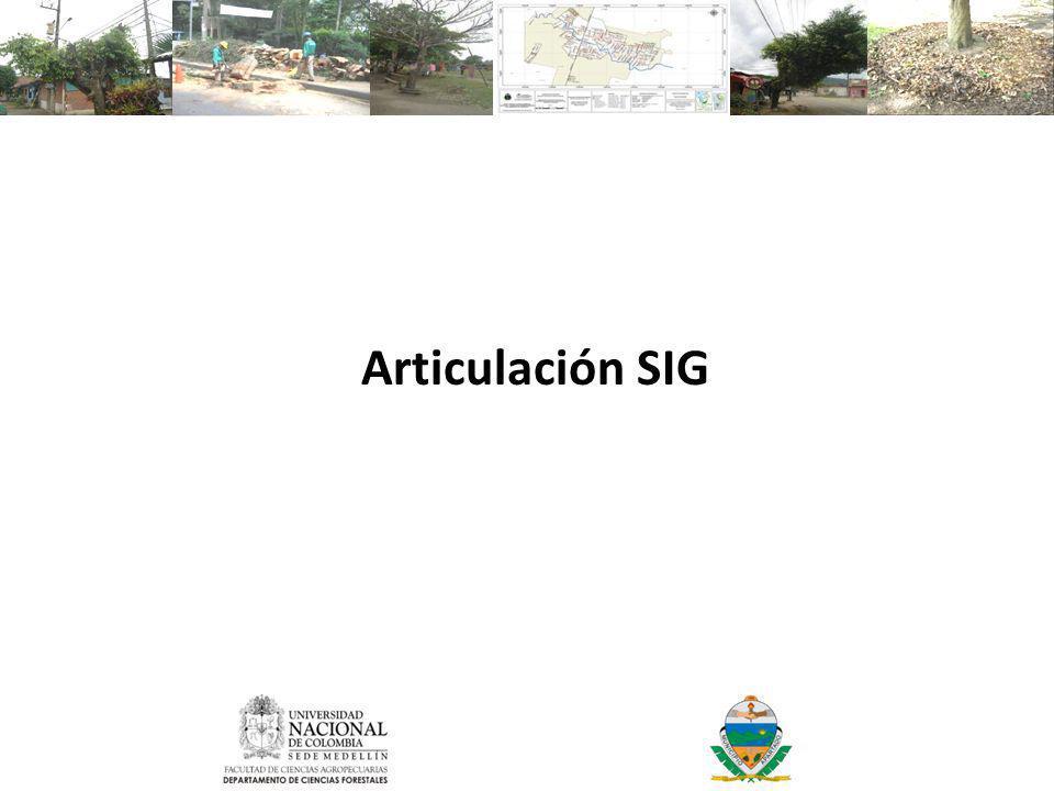 Articulación SIG