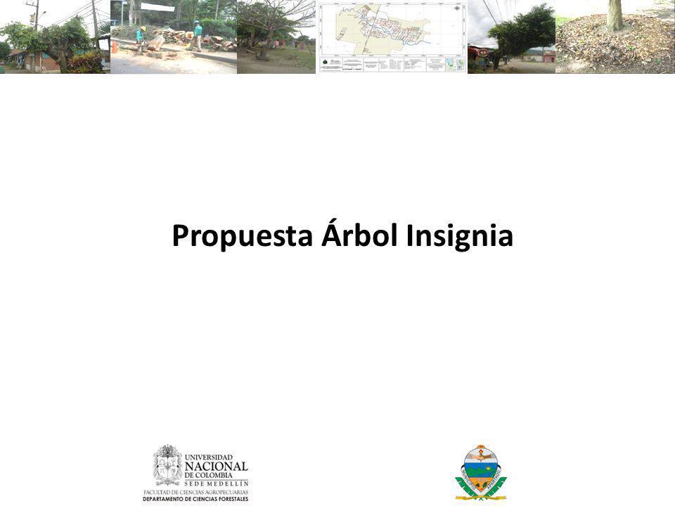 Propuesta Árbol Insignia