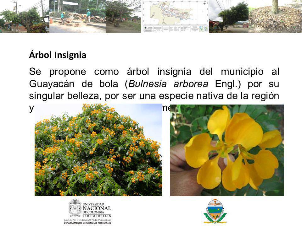 Árbol Insignia