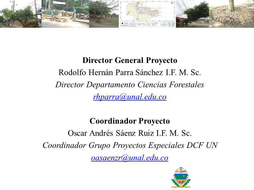 Director General Proyecto