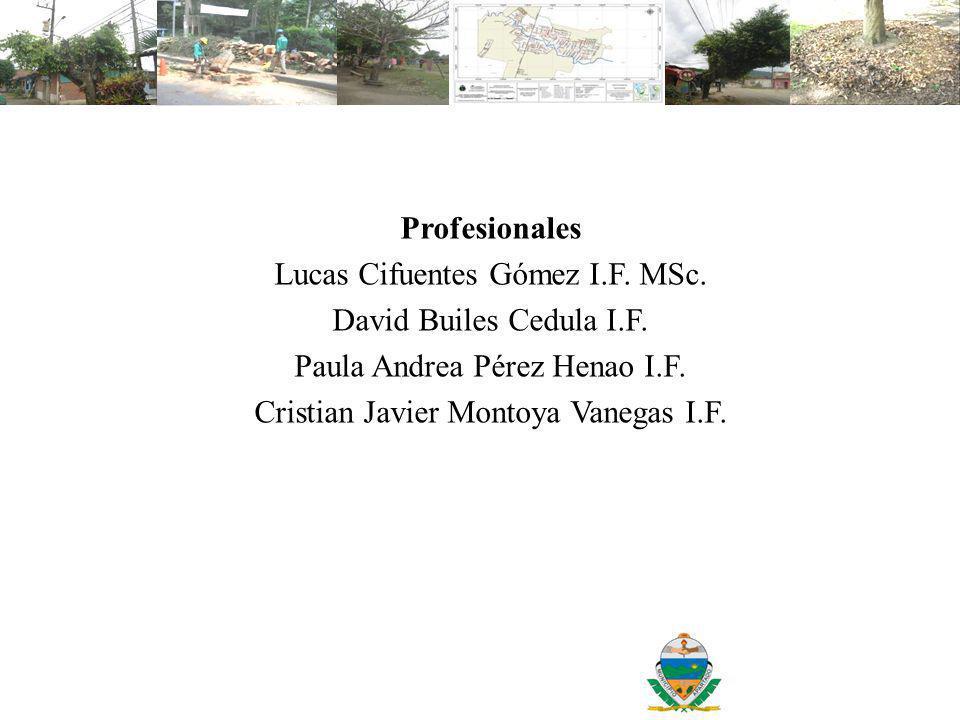 Lucas Cifuentes Gómez I.F. MSc. David Builes Cedula I.F.