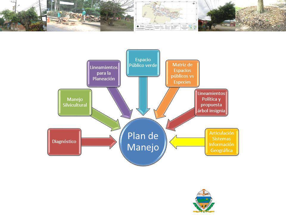 Plan de Manejo Espacio Público verde